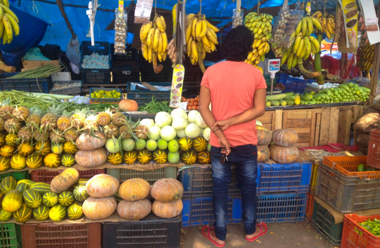 pic-kerala-05-shoppingforvegalleppey