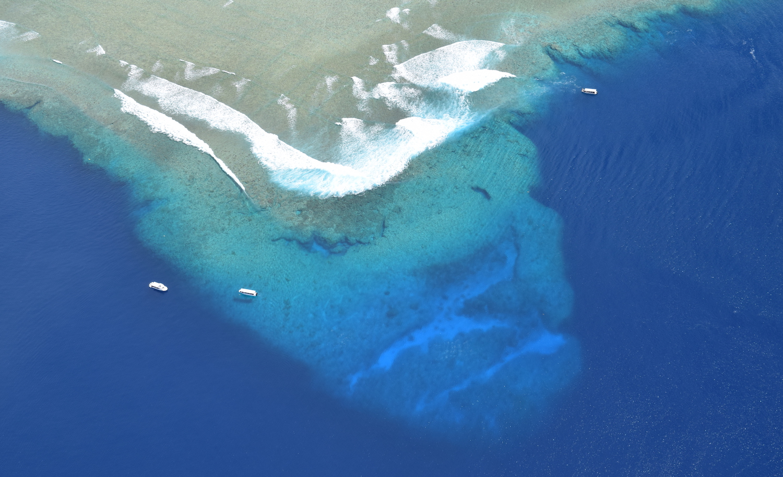 Aerial view of Blue Corner dive site in Palau