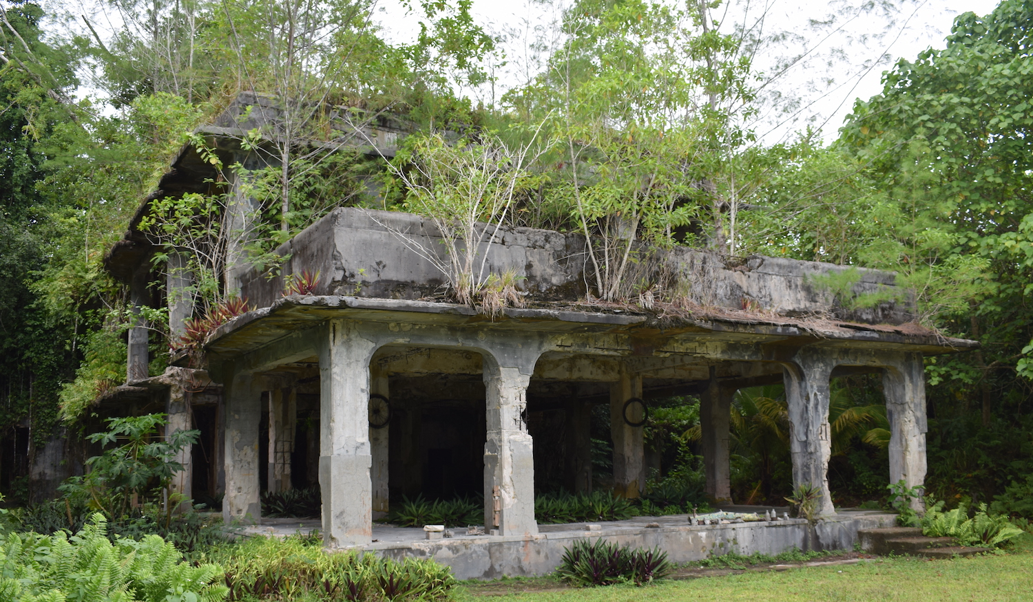 Ruins of Japanese WW2 military HQ in Peleliu