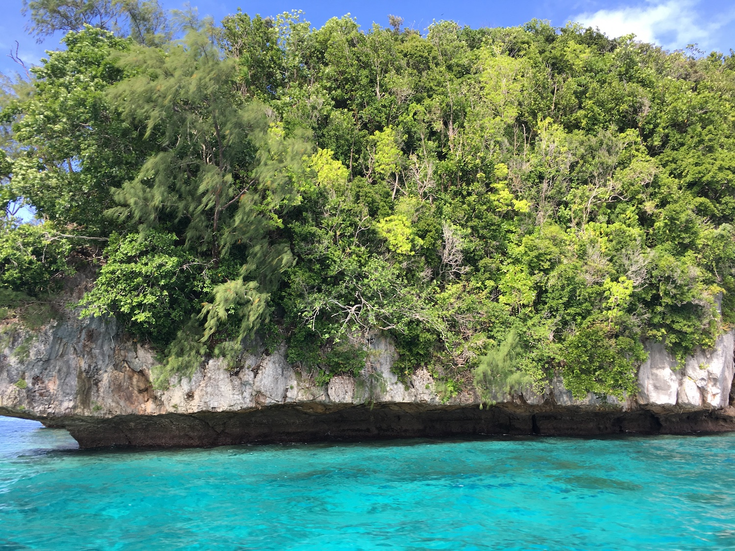 Close up of a Rock Island in Palau