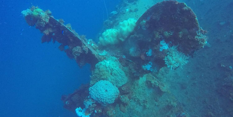 The propeller of a ship wreck at Truk Lagoon